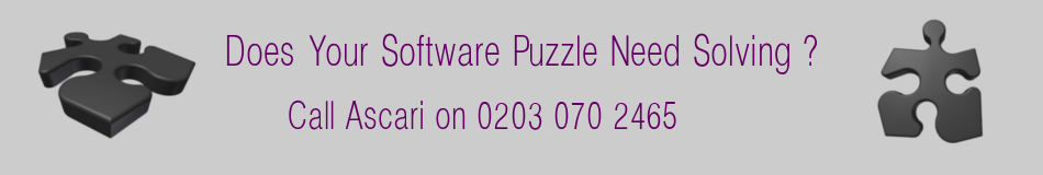 Software Puzzle